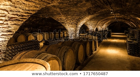 Wine cellar with oak barrels Stock photo © jordanrusev