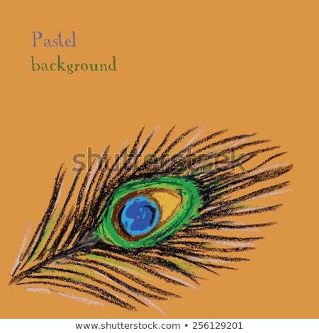 El çizim Pastel Mum Boya Tavuskuşu Vektör Ilüstrasyonu