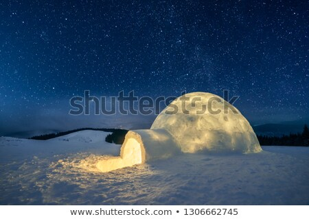 Scene with igloo at night Stock photo © bluering