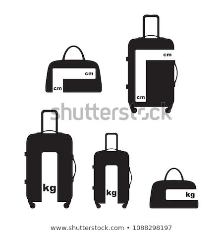 Equipaje pensión mano signo aeropuerto comprobar Foto stock © FER737NG