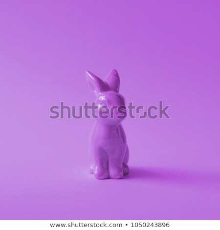 magic white rabbit Stock photo © blackmoon979