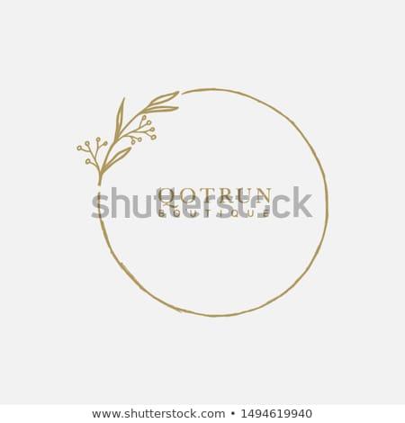 Színes virág logoterv terv levél vállalati Stock fotó © SArts
