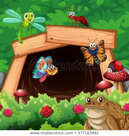 Különböző rovarok alagút illusztráció természet tájkép Stock fotó © bluering