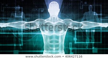 3D · tıbbi · örnek · erkek - stok fotoğraf © tussik