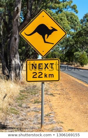kangaroos crossing sign stock photo © adrenalina