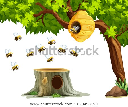 пчел · Flying · вокруг · улей · саду · иллюстрация - Сток-фото © bluering