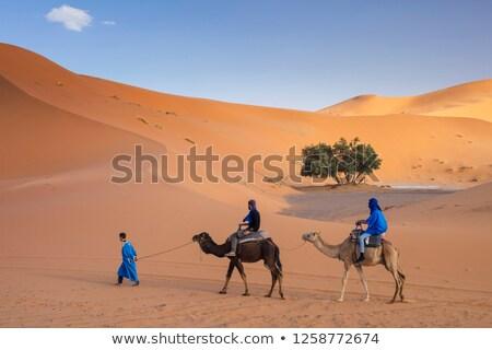 два арабских люди верблюда домой иллюстрация Сток-фото © bluering