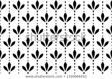 Adornos simple elegante monocromo monograma diseno Foto stock © Olena
