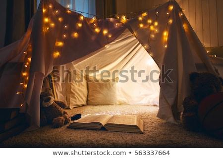 Kızlar çadır çocuk gece eğlence genç Stok fotoğraf © IS2