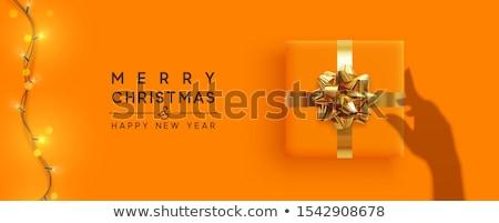 Karácsony fények girland női kezek fényes Stock fotó © artjazz