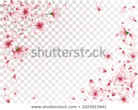 Melocotón flor de cerezo flores esquina diseno árbol Foto stock © Krisdog