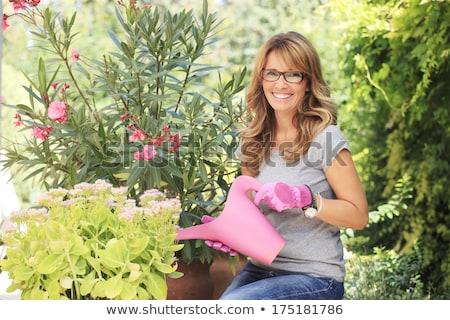 mulher · plantas · casa · retrato · sorridente - foto stock © is2