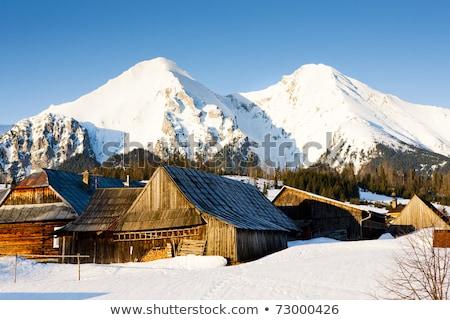 Casa de campo Eslováquia casa neve inverno blocos Foto stock © phbcz