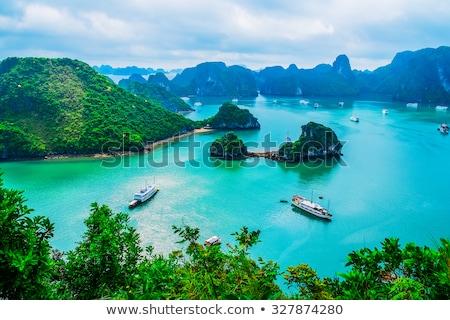 famoso · destino · delta · Vietnã · turista · natureza - foto stock © boggy