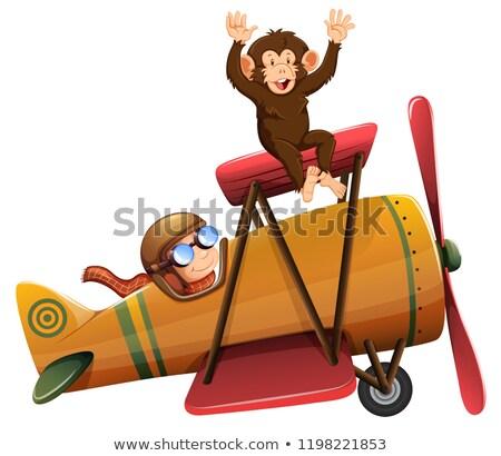 Piloot paardrijden vliegtuig aap illustratie hemel Stockfoto © bluering