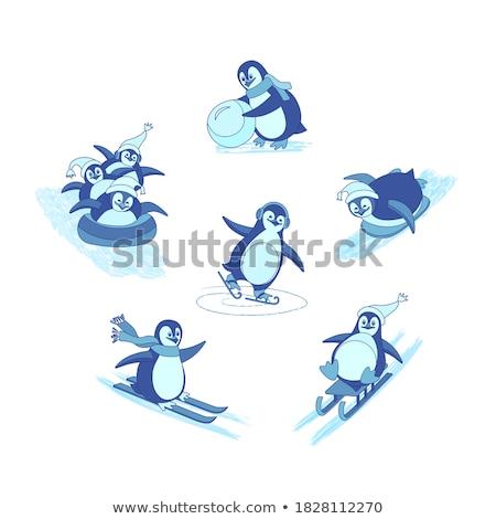 állat skicc pingvin hógolyó illusztráció természet Stock fotó © colematt