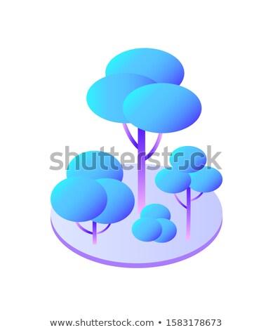 Ağaçlar çalı daire ikon yalıtılmış Stok fotoğraf © robuart