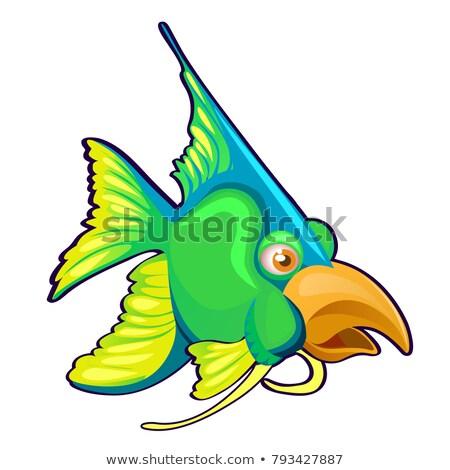 vert · poissons · oiseau · bec · isolé · blanche - photo stock © Lady-Luck