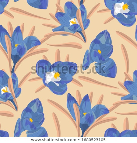 primavera · azul · flores · nieve · frontera - foto stock © neirfy