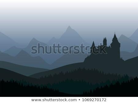 Zamek lesie odizolowany scena ilustracja drzewo Zdjęcia stock © colematt