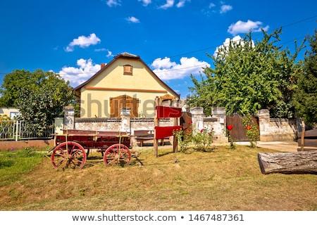 Uitzicht op straat historische architectuur dorp regio Kroatië hemel Stockfoto © xbrchx
