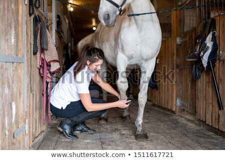 Young female carer in casualwear cleaning hoof of white purebred racehorse Stock photo © pressmaster