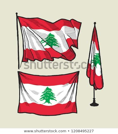 Bandeira branco assinar imprimir banda escove Foto stock © butenkow