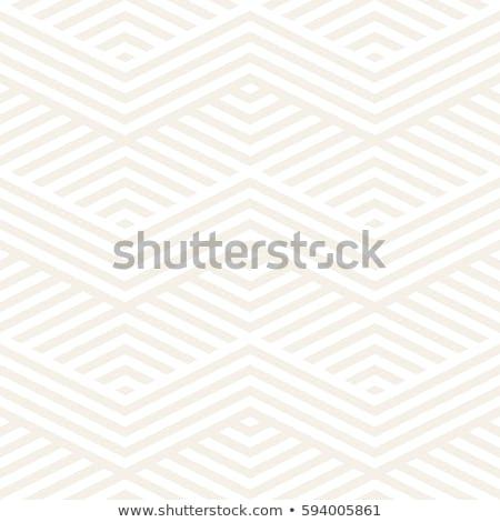 抽象的な ジグザグ スタイリッシュ 民族 飾り ストックフォト © samolevsky