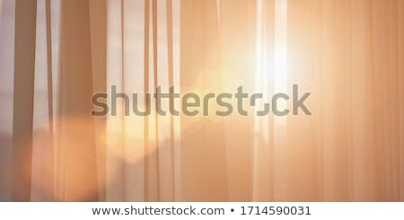 Cortinas janela pôr do sol mobiliário projeto casa Foto stock © Anneleven