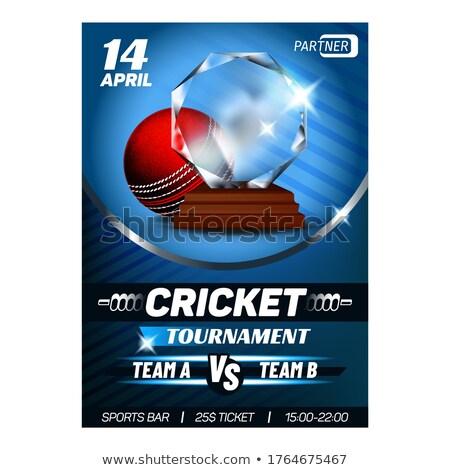 крикет победителем награда карт плакат Сток-фото © pikepicture