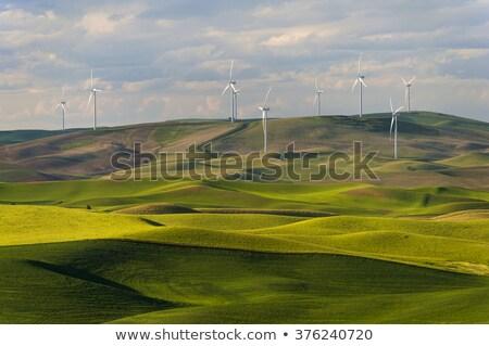 szélturbina · zöld · domb · tiszta · energia · felhős · kék · ég - stock fotó © swatchandsoda