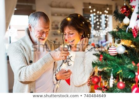 Casal velho natal família sorrir casal Foto stock © photography33