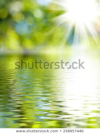 Stock photo: fresh green and river