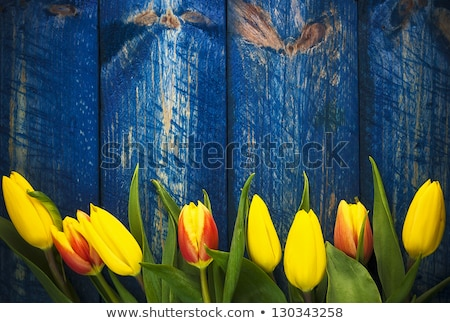 Art abstract background with spring floral motive Stock photo © fotoaloja