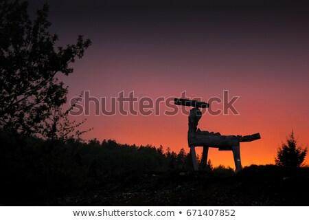 kettő · lovak · legelő · család · nap · természet - stock fotó © saddako2