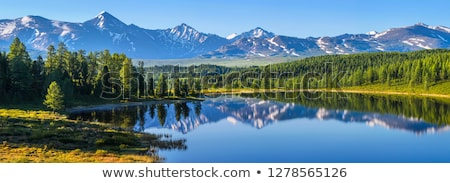 panorama mountains in sunny day stock photo © bsani