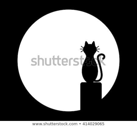 illustration of a cat in the moonlight  Stock photo © kariiika