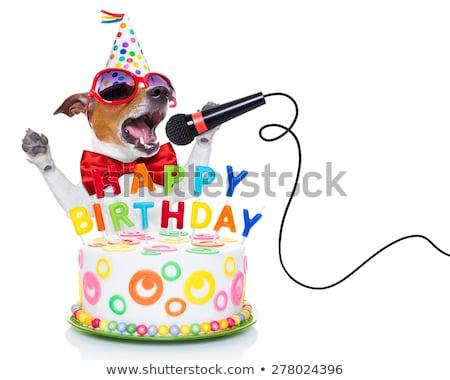 müzisyen · doğum · günü · yüksek · soyutlama · gramofon · kayıt - stok fotoğraf © fisher