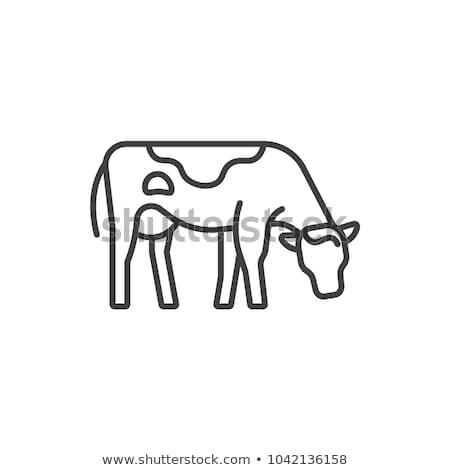 arancione · cartoon · toro · icona · vettore · illustrazione - foto d'archivio © robuart