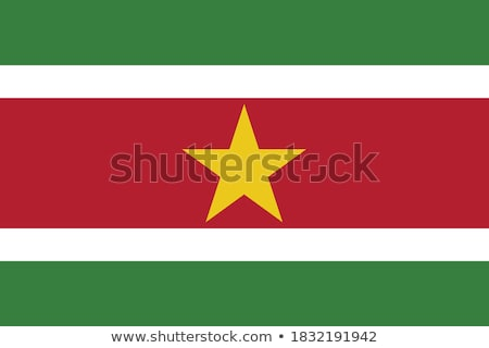 флаг · Суринам · карта · Мир · зеленый · Африка - Сток-фото © oxygen64