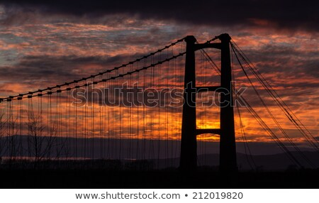 Opiki Bridge Remains Stock photo © rghenry