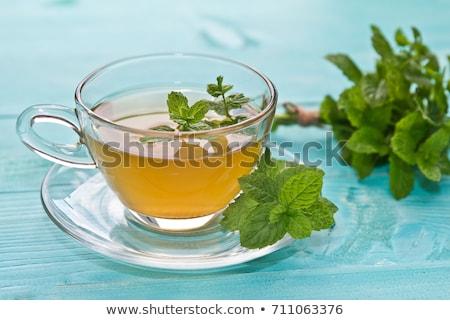 De chá fundo verde beber folhas Foto stock © yelenayemchuk