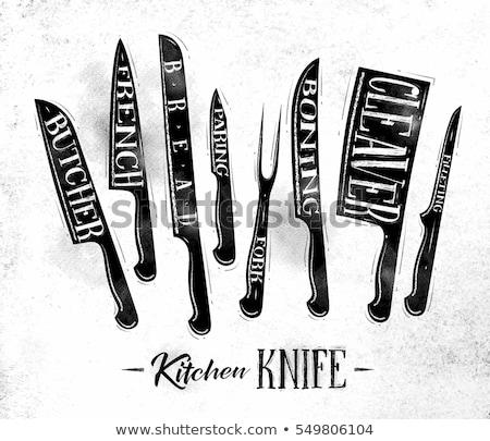 Konyha kés vektor illusztráció acél tárgy Stock fotó © Akhilesh