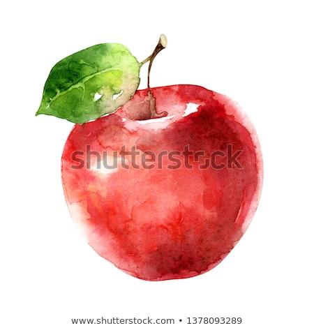 vízfesték · alma · gyümölcs · étel · természet · terv - stock fotó © suriya_aof9