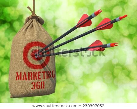 Marketing 360 - Arrows Hit in Red Target. Stock photo © tashatuvango