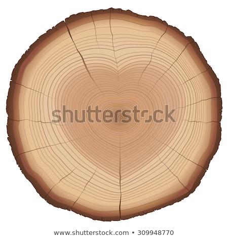Houten doorsnede hartvorm textuur hout bos Stockfoto © m_pavlov