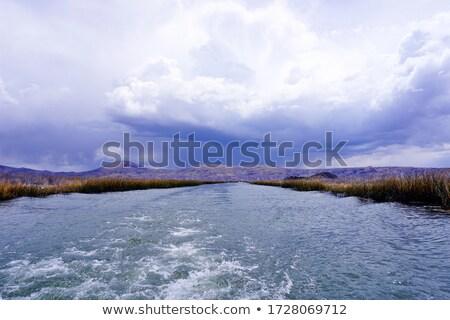 Storm озеро Боливия Молния небольшой Сток-фото © ildi