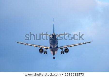 Jato doméstico companhia aérea vôo aterrissagem palmeira Foto stock © cboswell