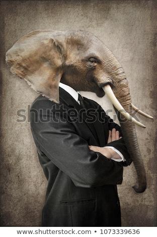 ビジネスマン · 顔 · 白 · カード - ストックフォト © Flareimage