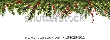 花輪 フレーム クリスマス ライト フレーム テンプレート ストックフォト © iunewind